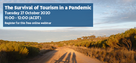 The Survival of Tourism in a Pandemic
